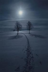 snowmoon-709162