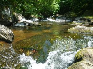 watersemeet