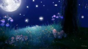 twilight-of-the-moon-bright-flowers-full-moon-glow-grass-light-sky-stars