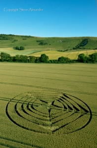 crop circle long man2