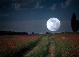 volle-maan-2