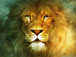 beautiful-lion-wallpapers-2560x1920