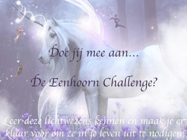 Eenhoorn challenge picture